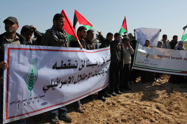 gaza-action-feb9a