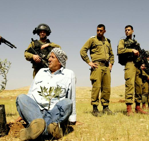 Palestinian environmental organizations urge MedPine to relocate conference from Israel